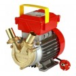 Rover 25 CE - Električna pretočna črpalka